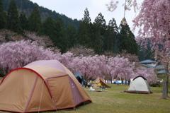 今だけ豪華なキャンプ場