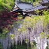 藤山神社~2