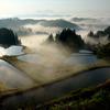 霧の中の棚田