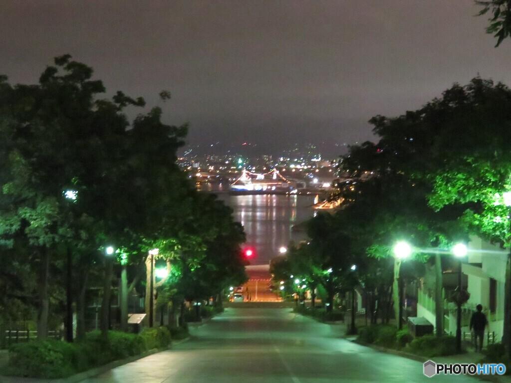 夜の八幡坂