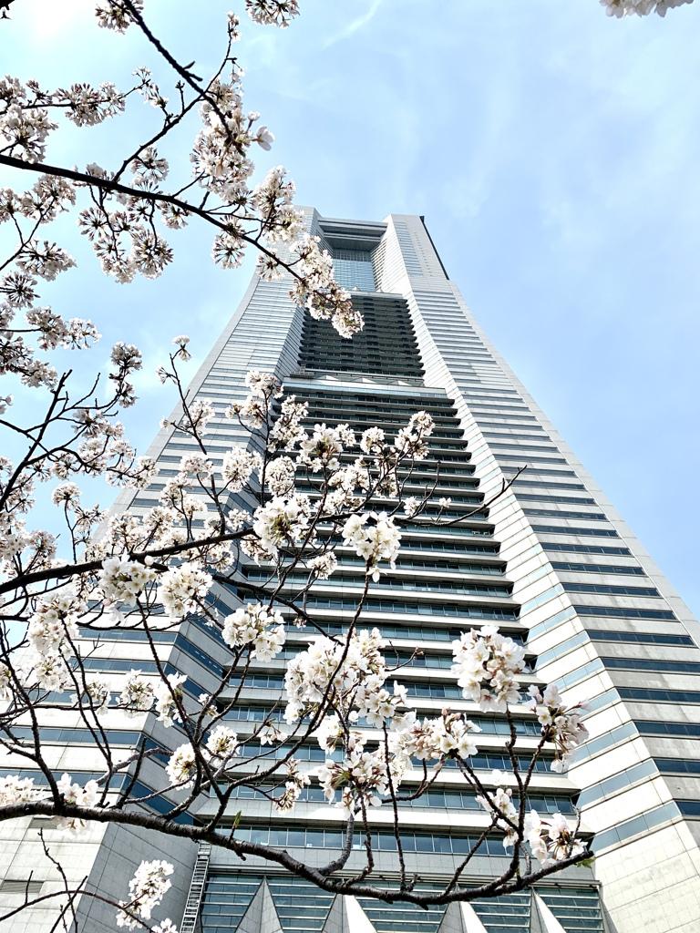 春のランドマークタワー