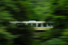 樹林の中を走る木次線