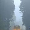 霧のスキマ