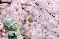 枯れ木に花を咲かせましょう