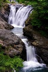 多留姫の滝の春