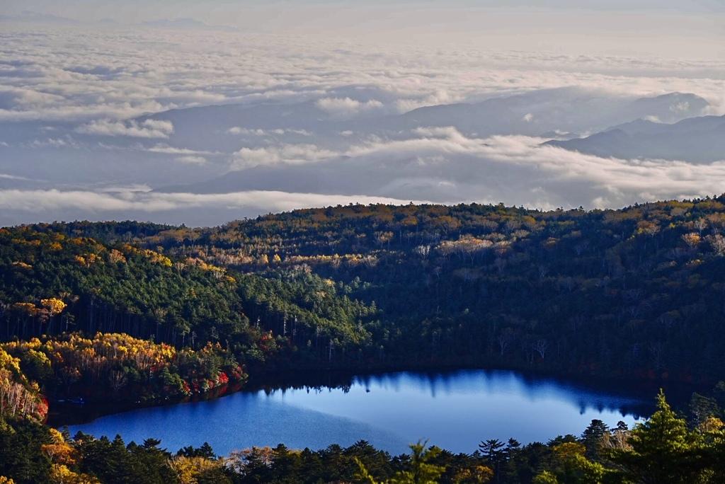 朝陽を浴びて輝く白駒池の紅葉、そして雲海