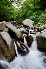 岩と水、そして緑