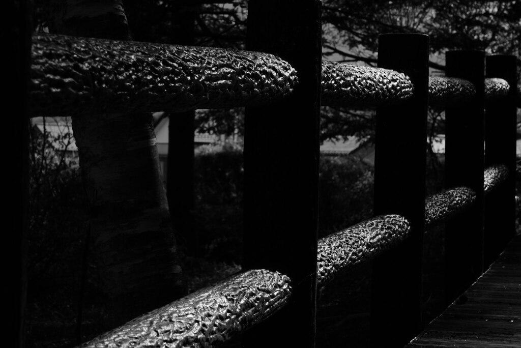 欄干:林の中の遊歩道