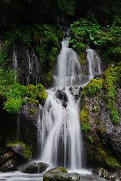 水と緑の饗宴:吐竜の滝