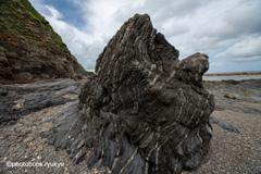 turbidite(タービダイト)