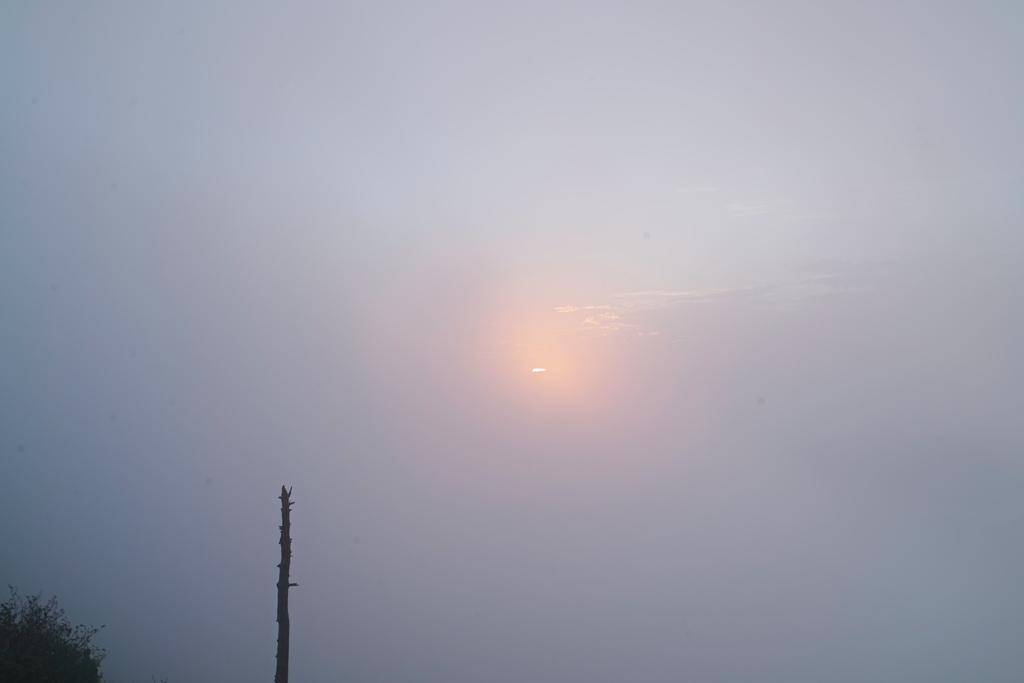 shibutoge at 5:26 12,Sep 2021