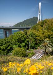 しまなみ海道の自転車旅