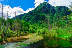 梓川より明神岳を望む