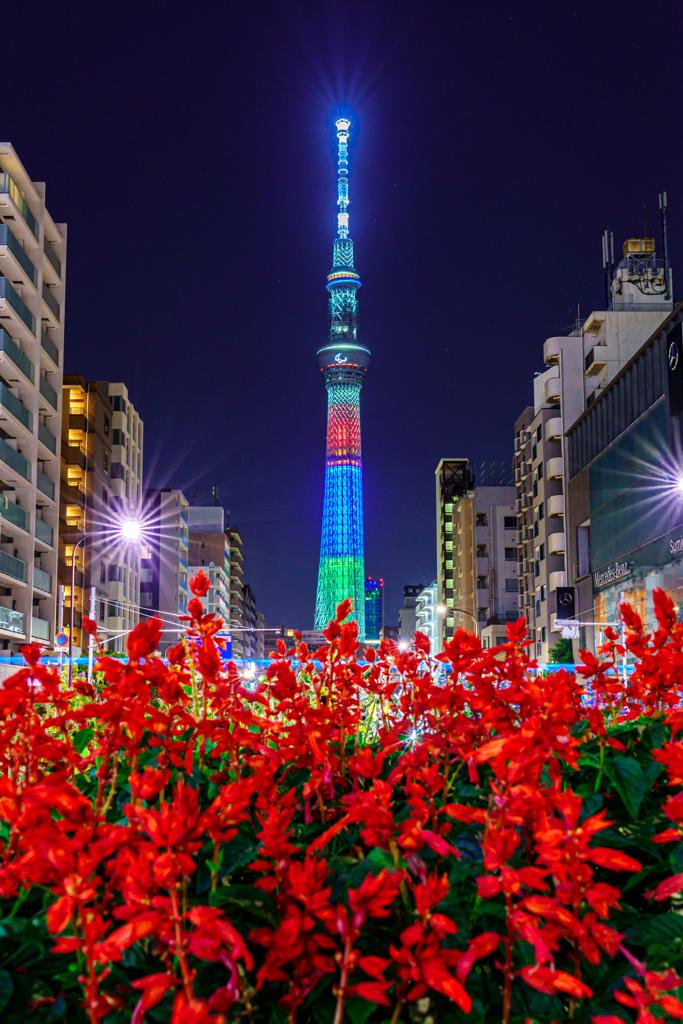 東京スカイツリー×パラリンピック×赤いお花