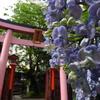秋葉原 柳森神社