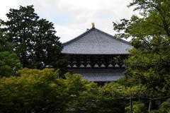 東大寺にて