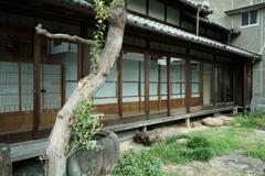 犬山城 / 城下町にて