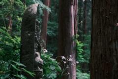 雨の山寺をクラシックネガで歩く3/9