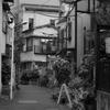渋谷〜monotone〜