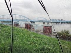 雨傘から見える景色