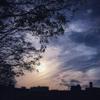 コロナ蔓延る大阪の空