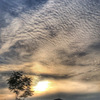 淀川河川敷から見る夕陽