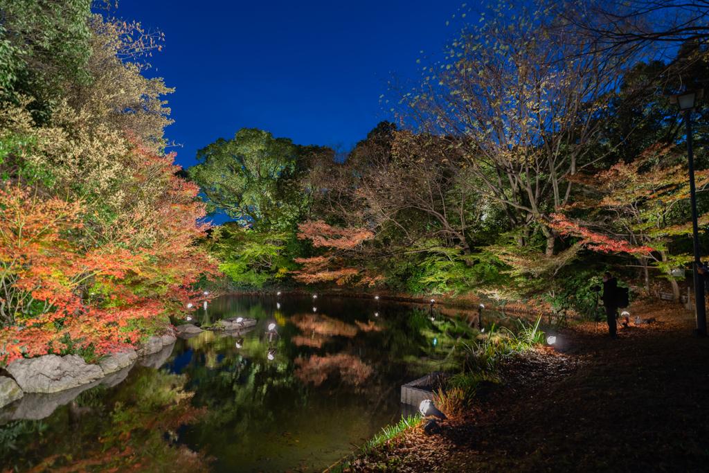 名古屋・白鳥庭園