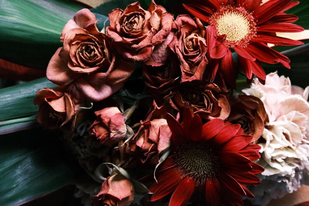 4月の薔薇