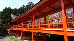 茂原の藻原寺