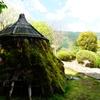 我々の祖先の住居の再現物の建材の周囲の苔の緑の美しさ