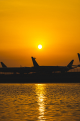 朝の空港2
