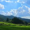 八重山の棚田