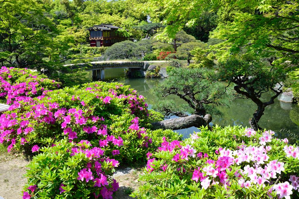 相楽園の庭園