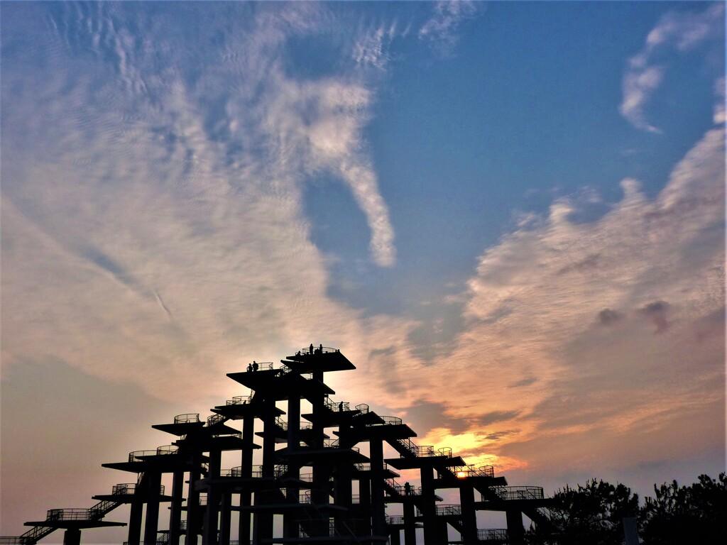 メカ五葉松と秋の空