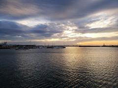 令和の春…銀鱗の漁港が焼ける時