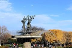 平和な公園に世界の人が集い・・・