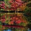 池にもみじと赤い橋