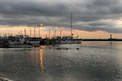 銀鱗と灯りの港