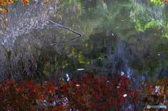 紅葉の鏡絵