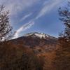 紅葉 富士山