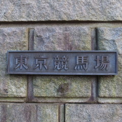 東京競馬場5