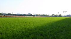 東京競馬場3