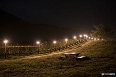 曽爾高原の夜