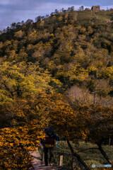 Autumn colors 2019'  ①
