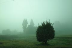 霧のむこうがわ