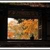 秋、ひとりごちて...