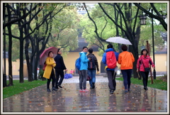 雨の西園寺