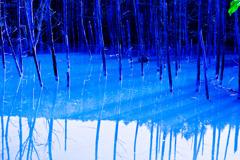 青すぎた池
