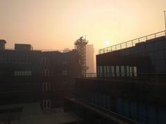 デリーの朝霧