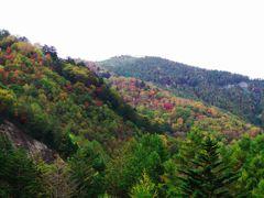恵那山トンネルの秋